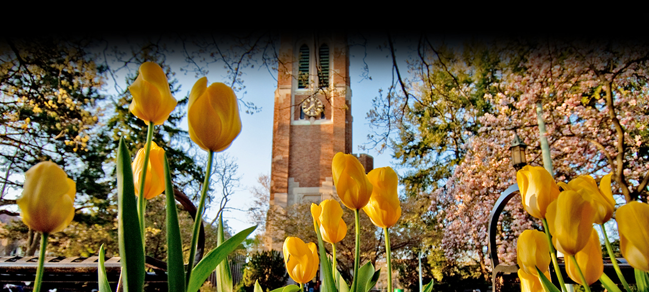 Beaumont Tower with tulips in front